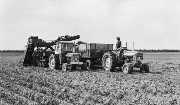 Rabobank history in farming